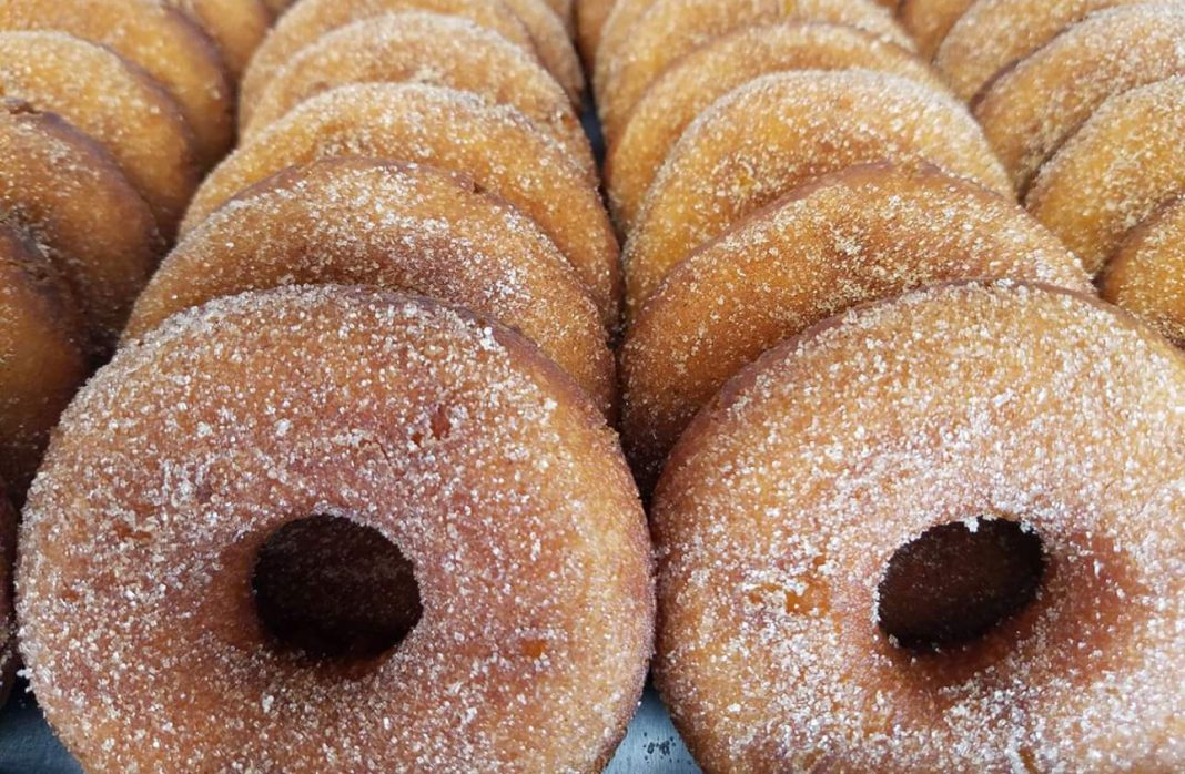 Delicious doughnuts powdered in sugar ordered in standing rows